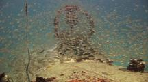 Wreck Of Betty Bomber, Mitsubishi G4m Bomber In Chuuk (Truk) Lagoon And Accessories