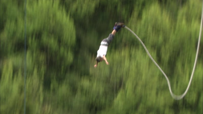 A Tourist Bungy Jumps From A Bridge.