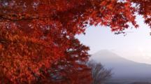 Autumn Leaves And Mt. Fuji, Japan