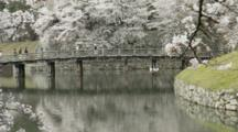 People Passing On Bridge Over Moat, And Cherry Blossoms In Japan