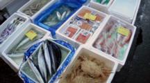 A Variety Of Fresh Seafood Displayed In Boxes At Tsukiji Market In Japan