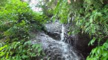 Small Waterfall Flows Over Rocks In Forest