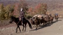 Camels Carrying Supplies In Xinjiang, China