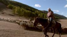 Men Riding Horses Herding Cattle
