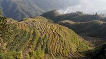 Panoramic Overlook Dragon's Backbone Rice Terraces, Guangxi, Kwangsi, China