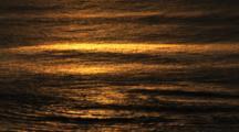 Golden Light Of Sunset On Calm Ocean