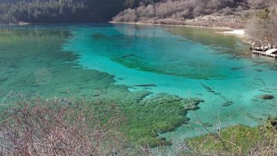 Five Flower Lake, Jiuzhaigou Valley, Sichuan, China