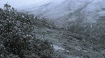 Giant Snow Flakes Fall Onto The Tundra In An Early Season Snow Storm.