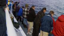 Humboldt Squid Fishing, People Stand At Railing