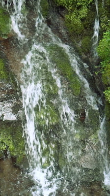 Vertical shot,Waterfall in forest,Nagano Prefecture