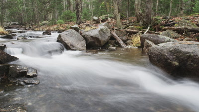 River Mauricio Handler Stock Footage