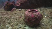 Unexploded Blast Fishing Pot On Seabed
