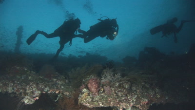 Scuba Divers On Dusk Dive, Silhouetted Over The Usat Liberty Shipwreck At Tulamben, Bali