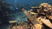 Iron Post Integrated Into Hard Coral Reef At Mount Mutiny In Fiji
