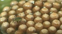 Close-Up Of Eggs (Some Already Hatched) Glued To Back Of Male Giant Waterbug (Family Belostomatidae) In Pond Under Water - Eggs Glued To Its Back By Female - It Carries Eggs Until They Hatch