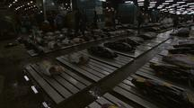 Tuna Carcasses, Tsukiji Fish Market
