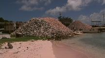 Mounds Of Conch Shells Next To Water