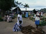 Women Inspect Pile Of Taro At Vanuatu Market