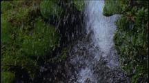 Water Blown Upwards From Mossy Rocks