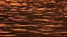 Pink Orange Sunset Reflections On Water
