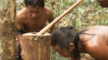 Indigenous People In Amazon Forest,Bullet Ant Ritual