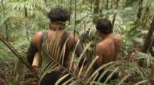 Indigenous Men Walk In Amazon Forest,Bullet Ant Ritual