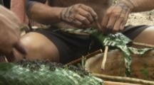Indigenous People In Amazon Forest,Bullet Ant Ritual,inserting live ants into woven leaf glove
