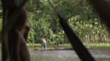Indigenous People Fish From Canoes,view from child inside hut