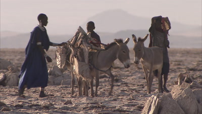 Masaai People Walking In A Desert With their Donkeys