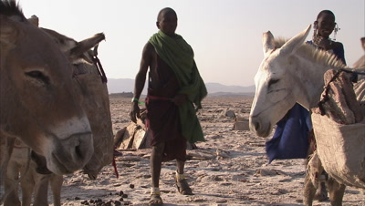 Masaai People With Their Donkeys