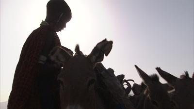 Masaai Loading Soda Slabs On Donkey