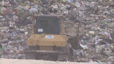 Heavy Equipment and Vultures at City Dump, Manaus
