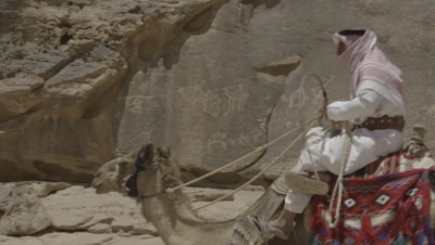 Bedouin Rides and Leads Camels Past Petroglyphs in Jordan Desert
