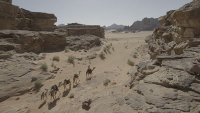 Crane shot Over Cliff to Reveal Bedouin Rides and Leads Camels in Jordan Desert