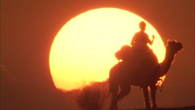 Camel Riders Pass Huge Setting Sun