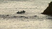 Dolphins Trapped, Boats Moving In For Capture, Early Morning