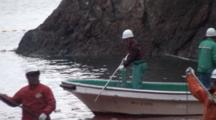 Fishermen On Boat Stabs Dolphins With Spears