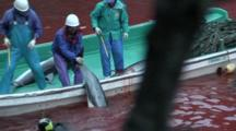 Fishermen In Boat Pull Dead Dolphins Out Of Bloody Water 2