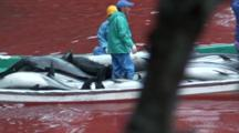 Boat Full Of Fishermen And Dead Dolphins Leaves