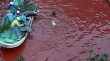 Fishermen In Boat Pull Several Dead Dolphins Out Of Bloody Water