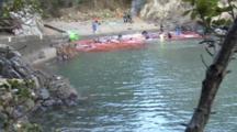 Fisherman Killing Captured Pilot Whales, Bloody Water