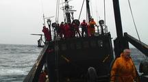 Farley Mowat, Sea Shepherd Conservation Society