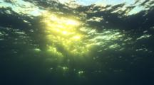 At  Dawn, Sunrays Breaking Through The Blue Ocean Surface