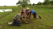 Anaconda Captured