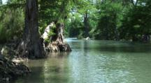 Guadalupe River With Cypress Trees Lining Banks