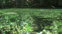 Texas Spring Flows Clear And Cool