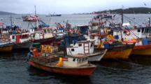 Fleet Kelp Fishing Boats Rafted Together