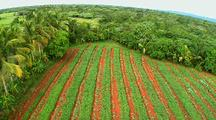 Aerial Over Desert Farmland, Dominican Republic, Southwest