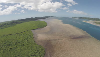 Aerial Drone footage traveling along a Mangrove intertidal area