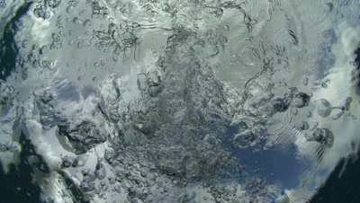 Viewer drops below water's surface